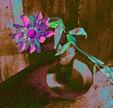 Vign_fleurs15