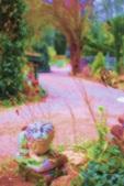 Vign_jardin