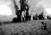 Vign_paysage4